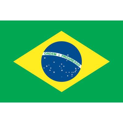 vlag brazili235 aan 189� in 4 dag