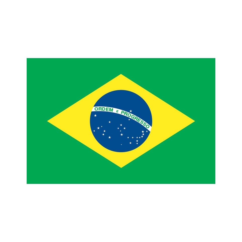 Brazilian Logo Design
