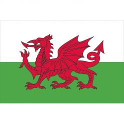 Country of Wales Flag